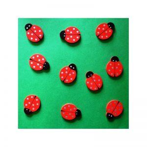 Confettis coccinelles